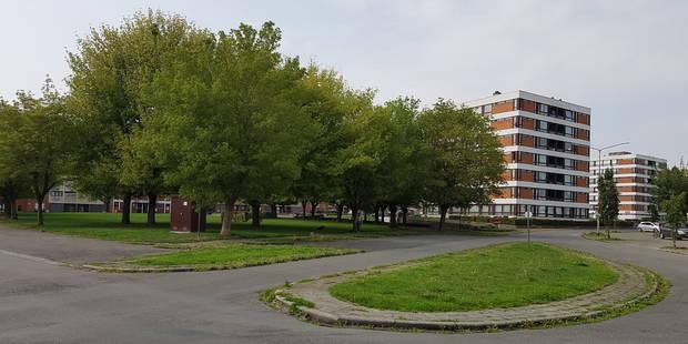 Tournai: Un homme interpellé après une tentative de meurtre - La DH