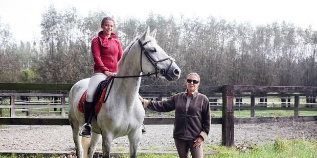 Enghien : La passion des chevaux depuis trois générations - La DH