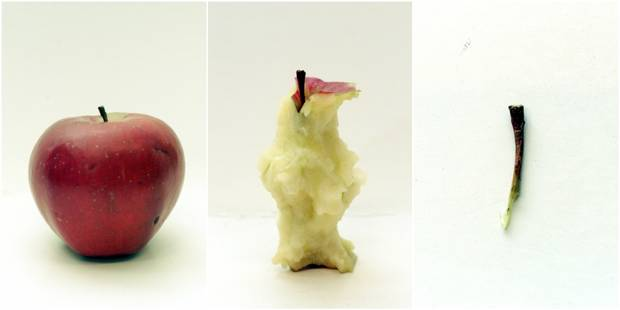 Pourquoi les femmes pensent moins à leur pomme que les hommes - La DH