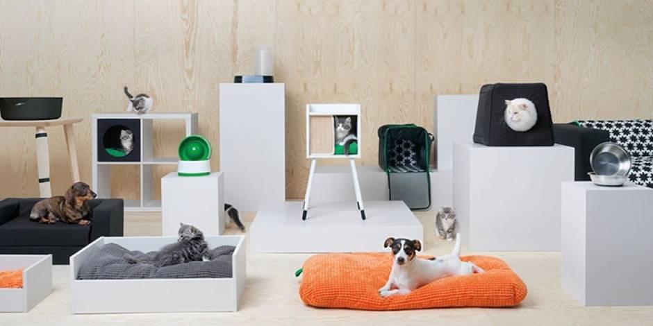 Les animaux aussi auront désormais leurs meubles Ikea