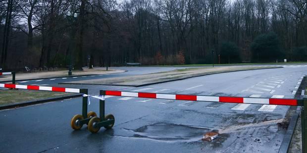 Intempéries à Bruxelles: le Bois de la Cambre rouvert à la circulation - La DH