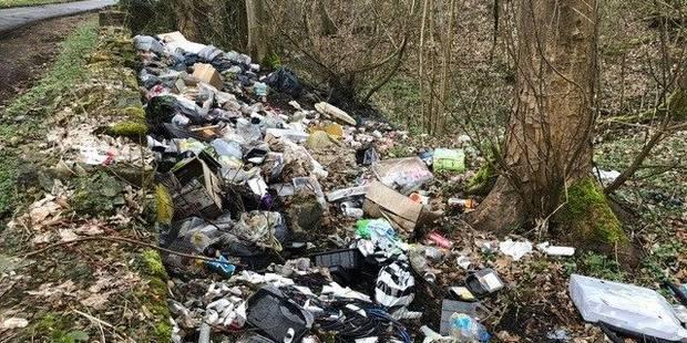 Une décharge sauvage crée la polémique à Morlanwelz - La DH